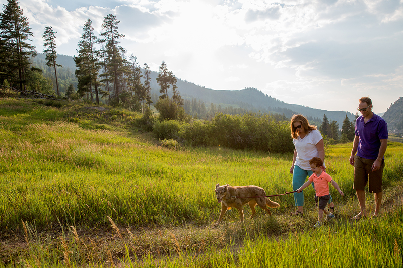 Top 5 Dog-Friendly Trails In Eagle County